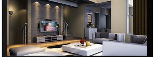 TV y Señal Dinámica